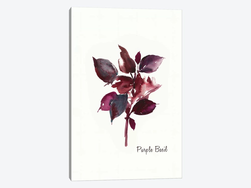 Purple Basil by Asia Jensen 1-piece Canvas Art
