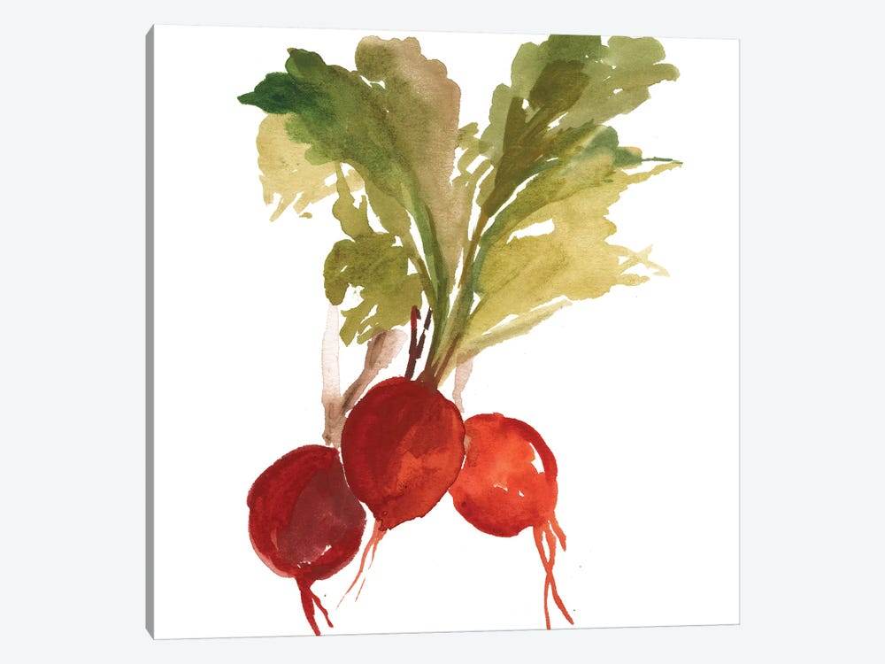 Radish by Asia Jensen 1-piece Canvas Artwork