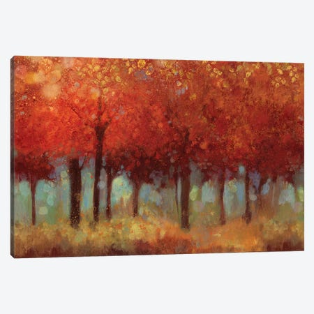 Red Forest Canvas Print #ASJ245} by Asia Jensen Canvas Print