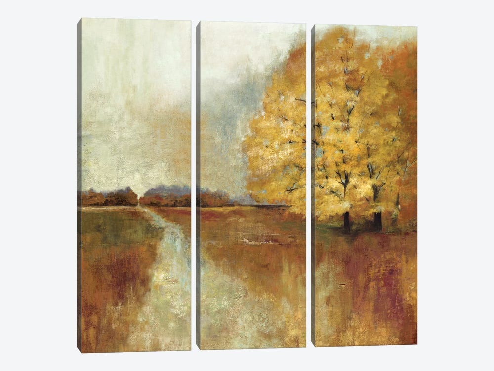 Repose by Asia Jensen 3-piece Canvas Artwork