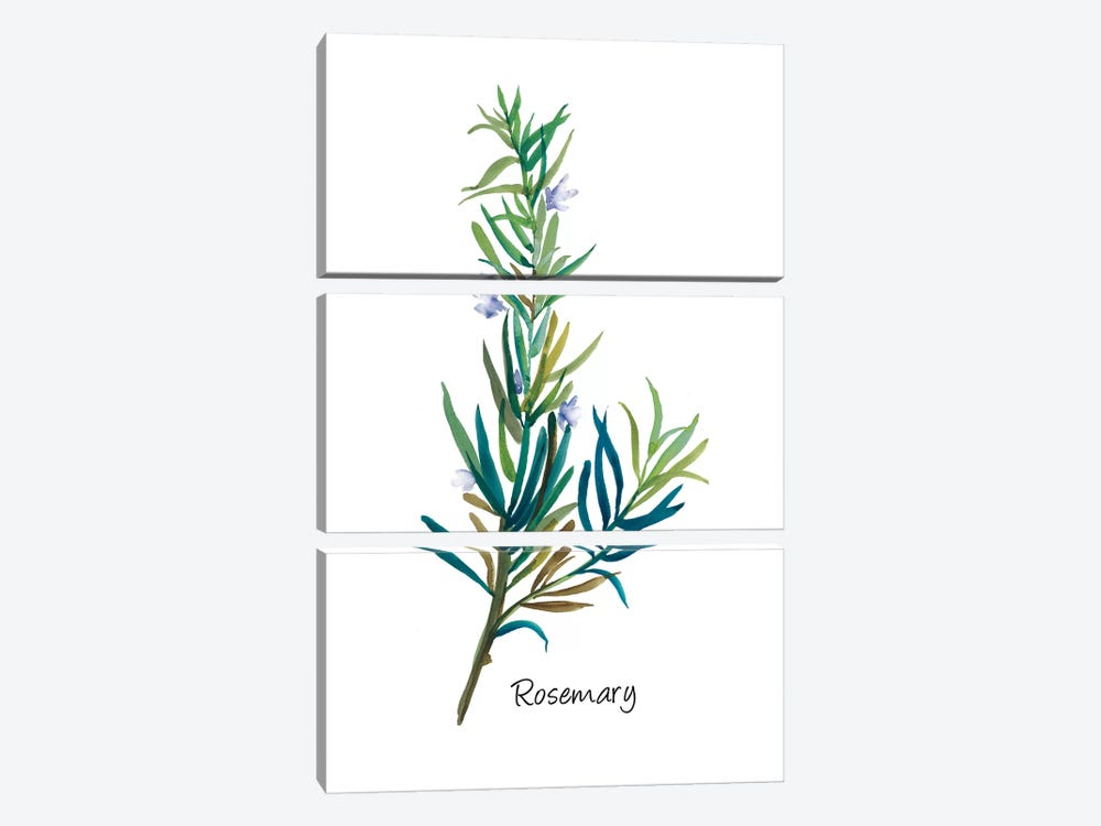 Rosemary I by Asia Jensen 3-piece Art Print
