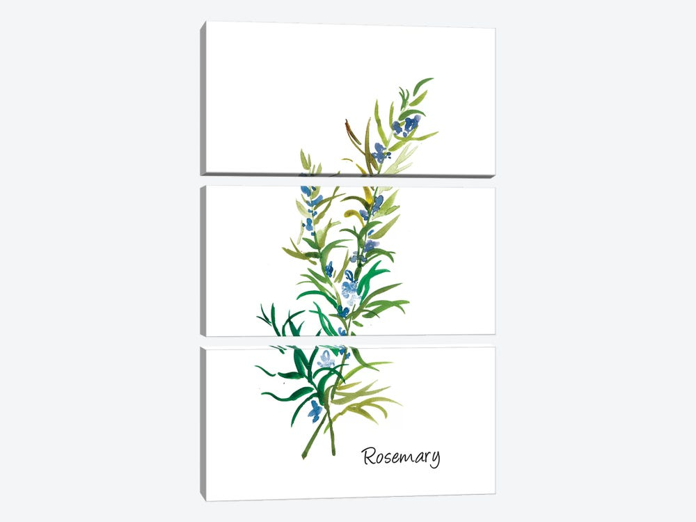 Rosemary II by Asia Jensen 3-piece Canvas Art
