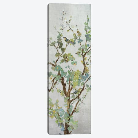 Sage Branch II Canvas Print #ASJ250} by Asia Jensen Canvas Art Print