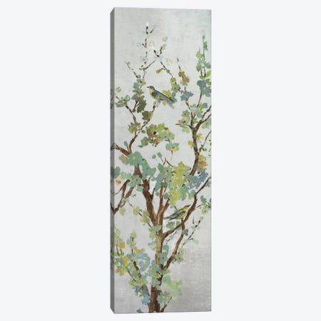 Sage Branch II Canvas Print #ASJ250} by Asia Jensen Canvas Art Print