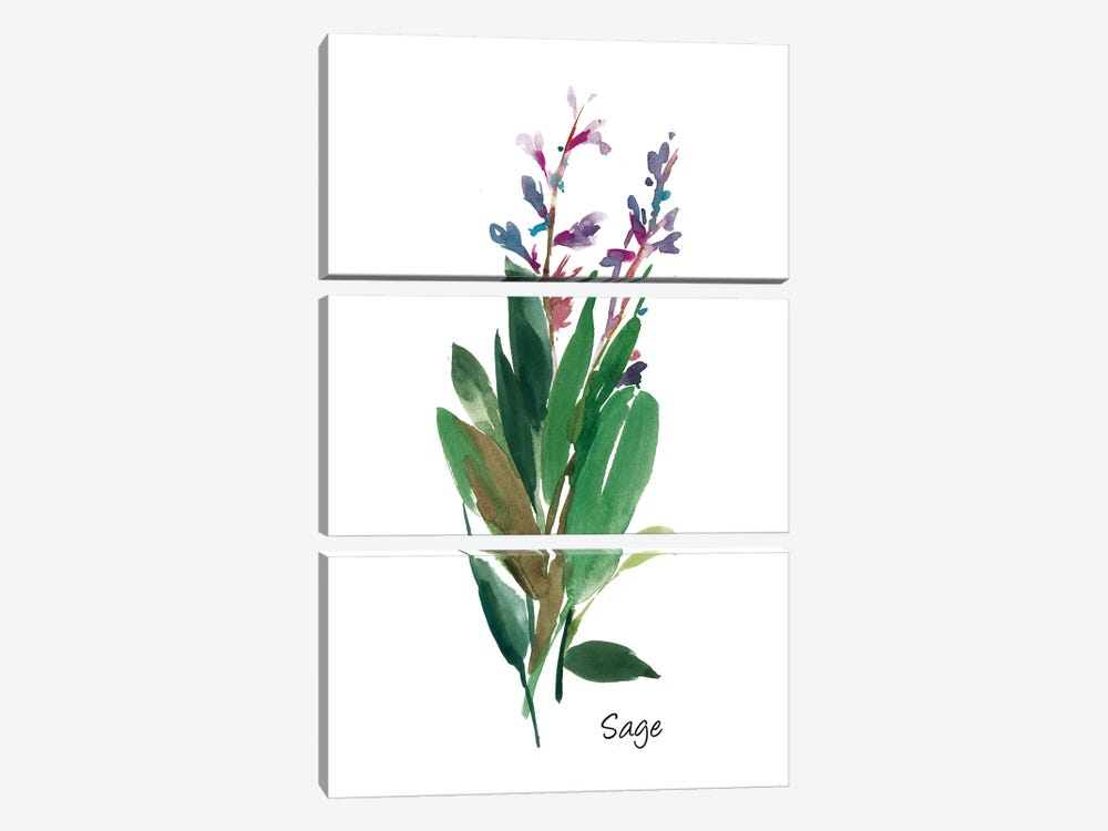 Sage I by Asia Jensen 3-piece Canvas Artwork