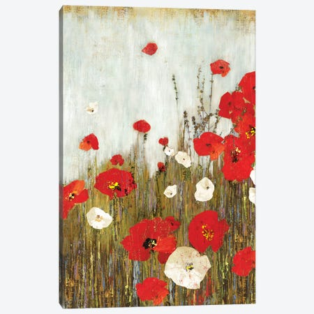 Scarlet Poppies Canvas Print #ASJ255} by Asia Jensen Canvas Artwork