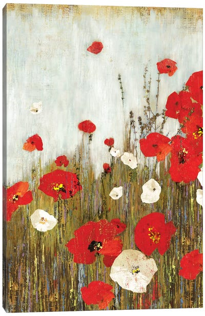 Scarlet Poppies Canvas Art Print
