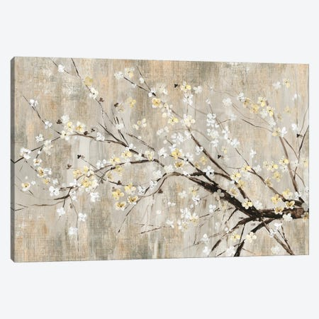 Silver Apple Blooms Canvas Print #ASJ258} by Asia Jensen Canvas Print