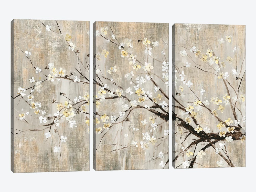 Silver Apple Blooms by Asia Jensen 3-piece Canvas Art Print