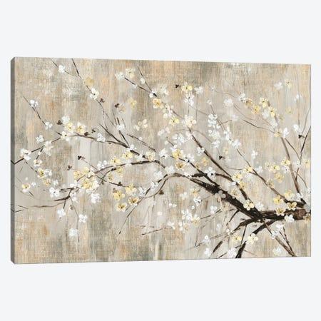 Silver Apple Blooms Canvas Print #ASJ258} by Asia Jensen Canvas Print