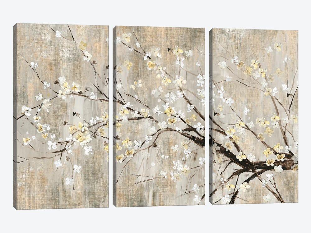 Silver Apple Blooms by Asia Jensen 3-piece Canvas Art Print