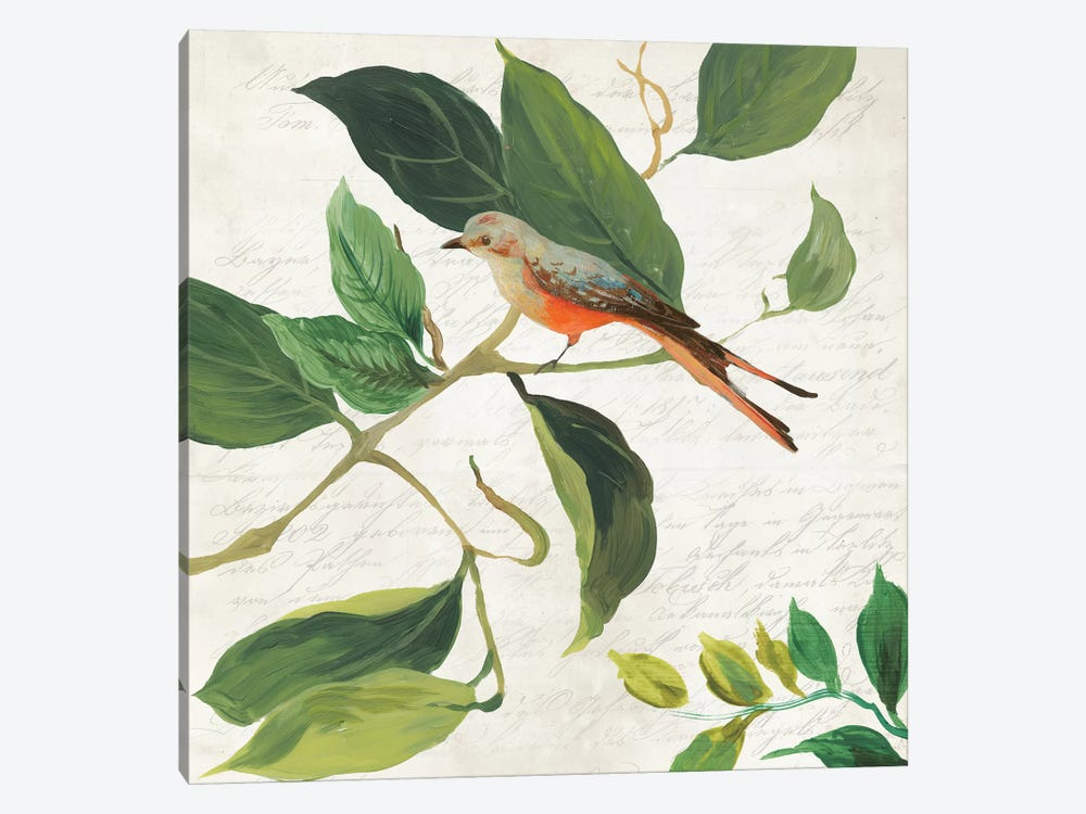 Singing Bird I by Asia Jensen 1-piece Canvas Wall Art