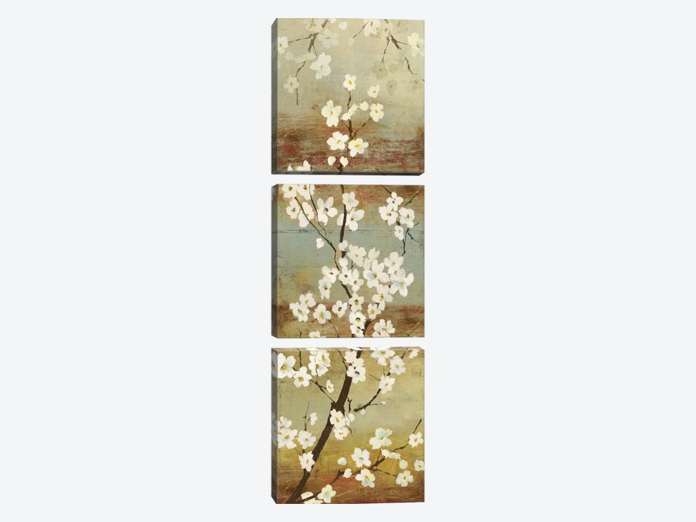 Blossom Canopy I by Asia Jensen 3-piece Canvas Art Print