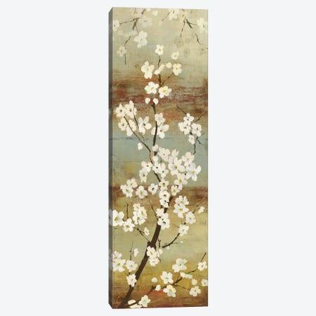 Blossom Canopy I Canvas Print #ASJ25} by Asia Jensen Canvas Print