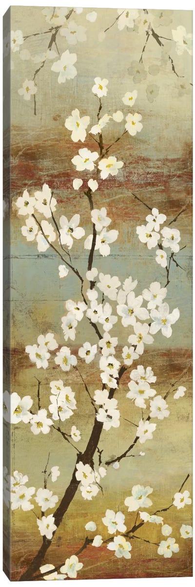 Blossom Canopy I Canvas Art Print