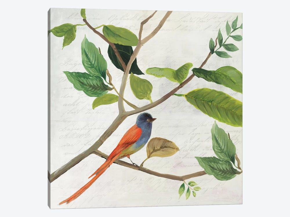 Singing Bird II by Asia Jensen 1-piece Canvas Art