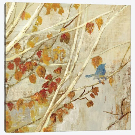 Singing I Canvas Print #ASJ261} by Asia Jensen Canvas Art