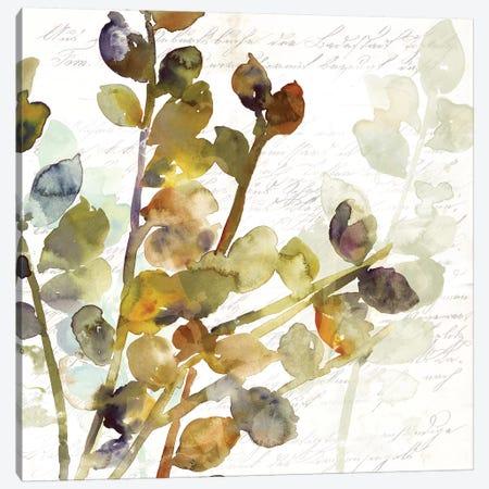 Solarium I Canvas Print #ASJ265} by Asia Jensen Art Print