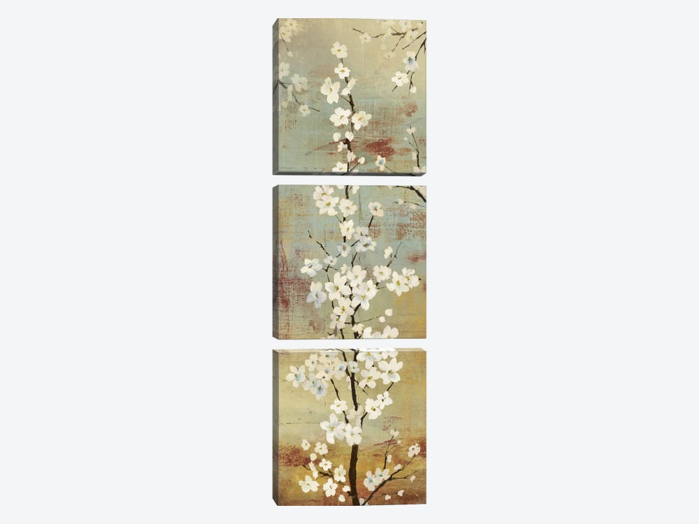 Blossom Canopy II by Asia Jensen 3-piece Canvas Wall Art
