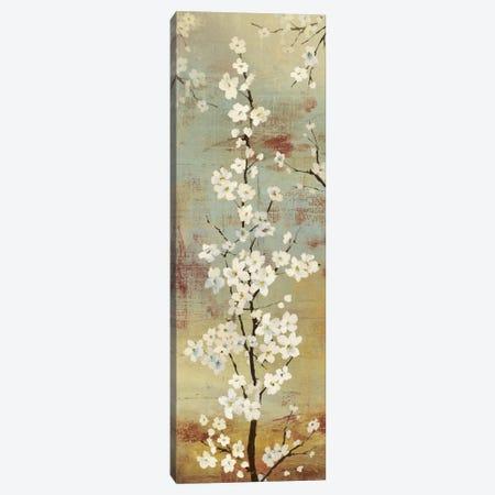 Blossom Canopy II Canvas Print #ASJ26} by Asia Jensen Art Print