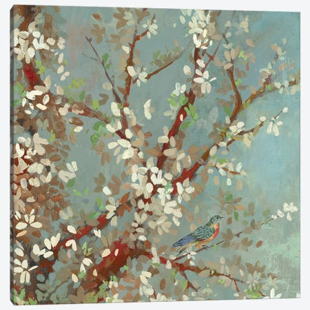 Sunshine Gleams I Canvas Print #ASJ279} by Asia Jensen Canvas Art Print