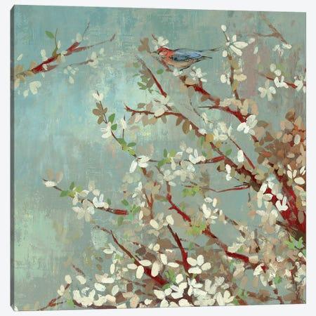Sunshine Gleams II Canvas Print #ASJ280} by Asia Jensen Canvas Wall Art