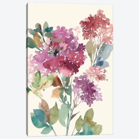 Sweet Hydrangea I Canvas Print #ASJ283} by Asia Jensen Canvas Art