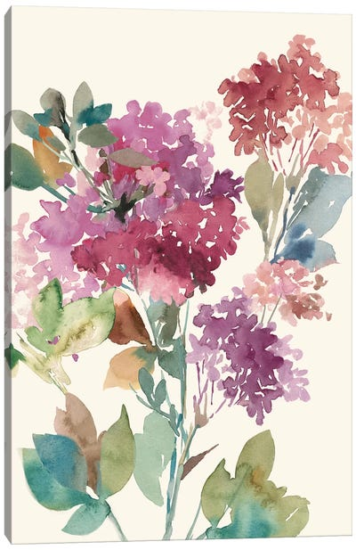 Sweet Hydrangea I Canvas Art Print