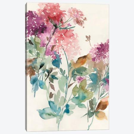 Sweet Hydrangea II Canvas Print #ASJ284} by Asia Jensen Art Print