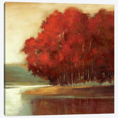 Touch Of Red Canvas Print #ASJ299} by Asia Jensen Canvas Art Print