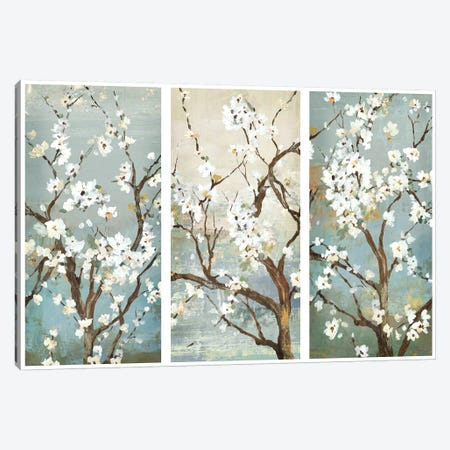 Triptych In Bloom Canvas Print #ASJ300} by Asia Jensen Art Print