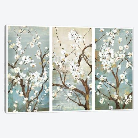 Triptych In Bloom Canvas Print #ASJ300} by Asia Jensen Art Print