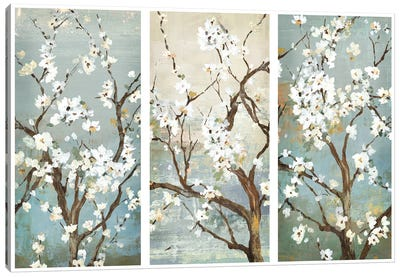 Triptych In Bloom Canvas Art Print
