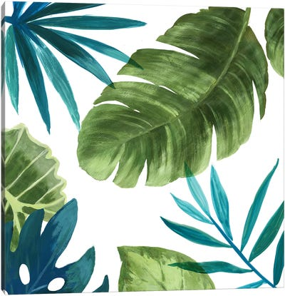 Tropical Leaves II Canvas Art Print