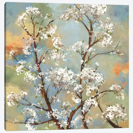 Vignette I Canvas Print #ASJ315} by Asia Jensen Canvas Art Print