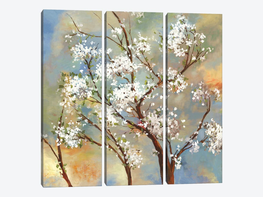 Vignette II by Asia Jensen 3-piece Canvas Wall Art