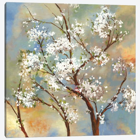 Vignette II Canvas Print #ASJ316} by Asia Jensen Canvas Print