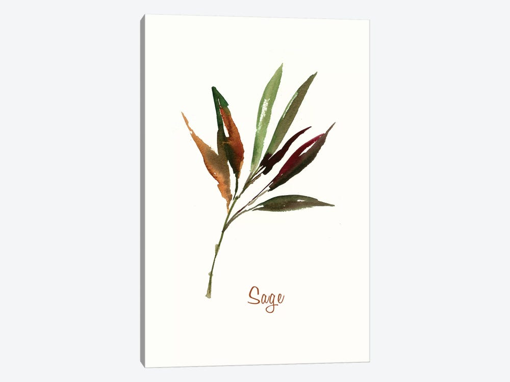 Wild Sage by Asia Jensen 1-piece Canvas Artwork