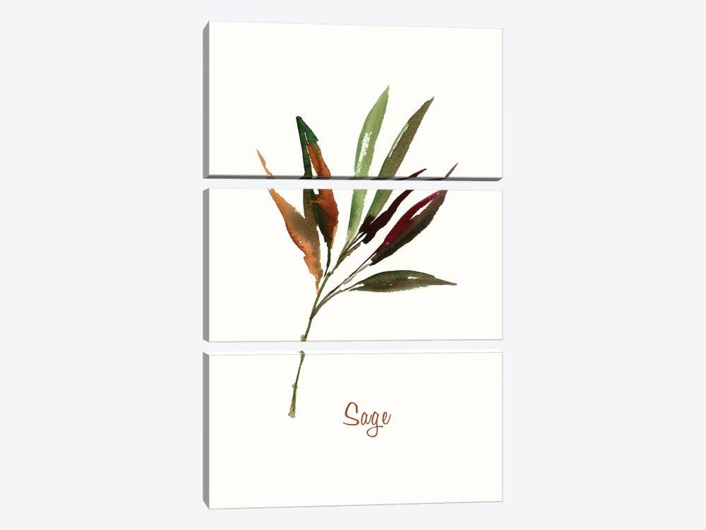 Wild Sage by Asia Jensen 3-piece Canvas Artwork