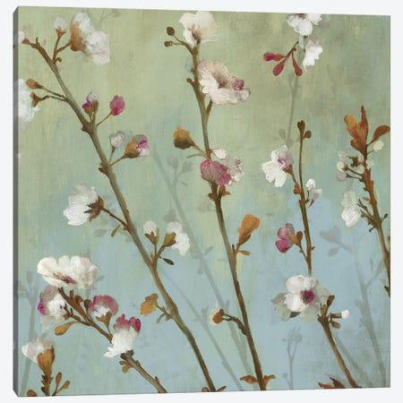 Wind Blossoms I Canvas Print #ASJ326} by Asia Jensen Canvas Art