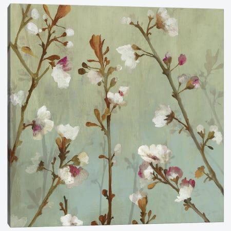 Wind Blossoms II Canvas Print #ASJ327} by Asia Jensen Canvas Artwork