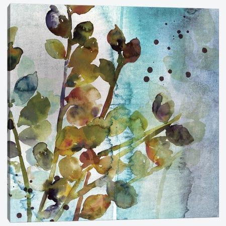 Within I Canvas Print #ASJ328} by Asia Jensen Canvas Art Print