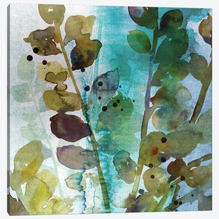 Within II Canvas Print #ASJ329} by Asia Jensen Canvas Art Print