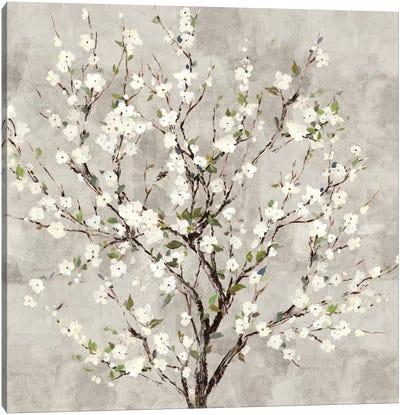Bloom Tree Canvas Art Print