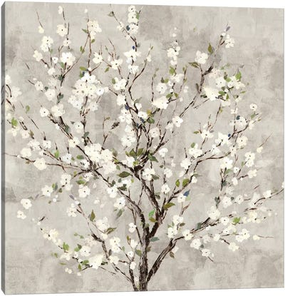 Bloom Tree Canvas Art Print