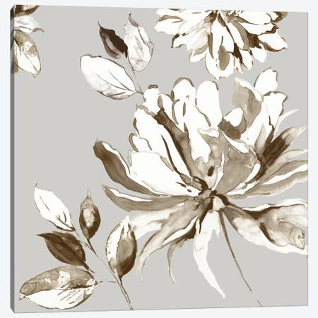 Botanical Gray I Canvas Print #ASJ336} by Asia Jensen Art Print