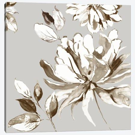 Botanical Gray I Canvas Print #ASJ336} by Asia Jensen Art Print