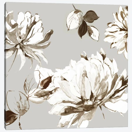 Botanical Gray II Canvas Print #ASJ337} by Asia Jensen Canvas Art Print