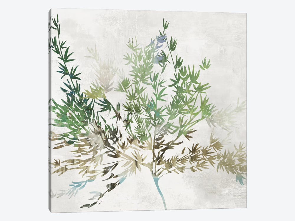 Olive Branch by Asia Jensen 1-piece Canvas Art Print