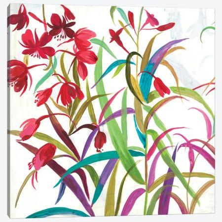 Tropical I Canvas Print #ASJ343} by Asia Jensen Canvas Art Print